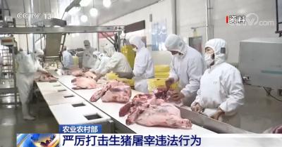 农业农村部:严厉打击生猪屠宰违法行为