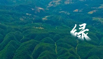 【年画送到北京去③】云南底色:绘出生态文明建设美丽画卷