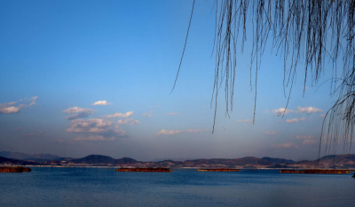 通海县人民政府关于对杞麓湖沿岸生态巡护通道实行全封闭管理的通告
