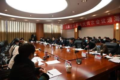 通海县代表团审议市政府工作报告