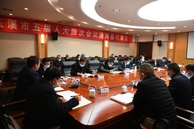 通海代表团继续审议市政府工作报告