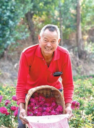 云南易门县罗台旧村:群众走上一条花香四溢致富路