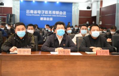 我县组织参加云南省开展党史学习教育动员大会
