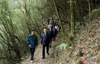 阮成发在高黎贡山生态保护及边境安全会议上强调:牢牢守住国家西南生物生态安全第一道屏障