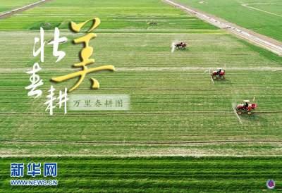新华全媒+|万里春耕图——走进全国春耕备耕的壮美画卷