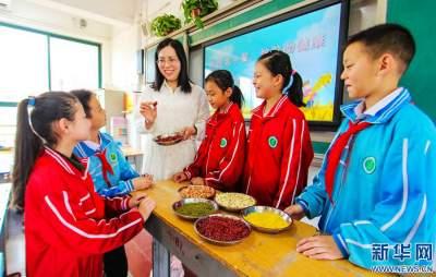 中国学生营养日丨树立健康饮食新风尚