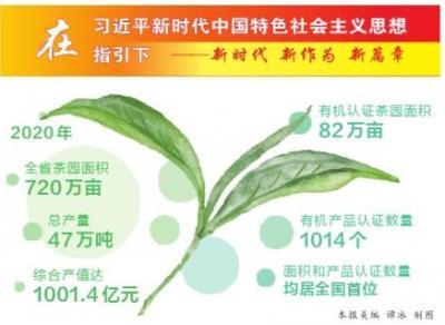 云茶产业实现综合产值千亿元目标