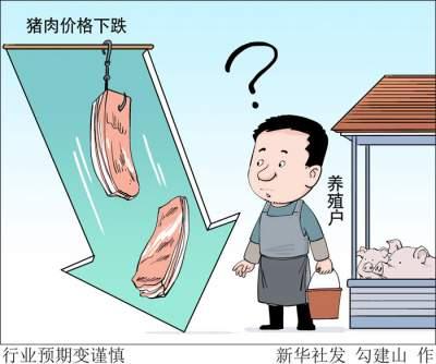 """缓解""""猪周期""""波动 多部门合力完善政府猪肉储备调节机制"""