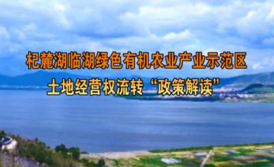 """杞麓湖临湖绿色有机农业产业示范区土地经营权流转""""政策解读"""""""