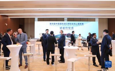 第四届进博会线上国家展启动试运行
