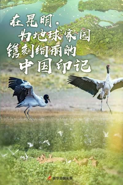 在昆明,为地球家园镌刻绚丽的中国印记