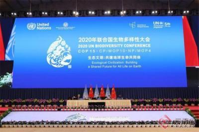 COP15第一阶段会议闭幕 世界、中国和云南收获了什么