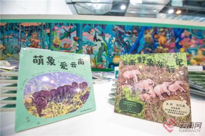"""3本""""高颜值""""图书亮相COP15 《奇妙物种在云南:生物多样性之美》《萌象爱云南》《云南野象旅行记》受热捧"""