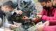 【疫情防控 金平在行动】金平农场:疫情、病害防控两不误,确保橡胶顺利投产