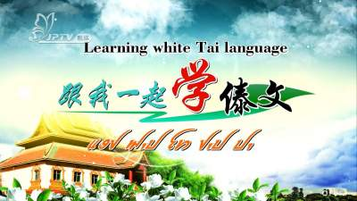 【金平非遗】跟我一起学傣文 第一课第三节后标、下标、前后标元音