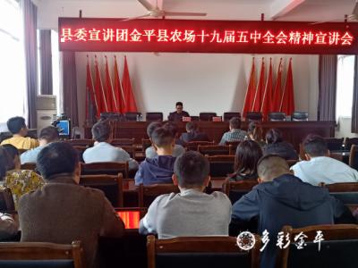 学习贯彻党的十九届五中全会精神县委宣讲团报告会在金平县农场召开