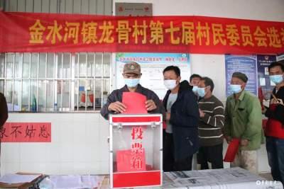 严格标准 规范程序丨金平县各乡镇顺利完成第七届村民委员会换届选举