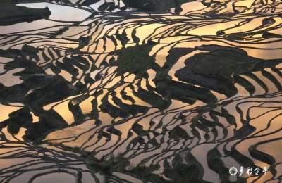 【聚焦】雕在大地上的诗行——世界文化遗产哈尼梯田生态故事
