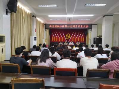 共青团勐拉镇第一次代表大会召开