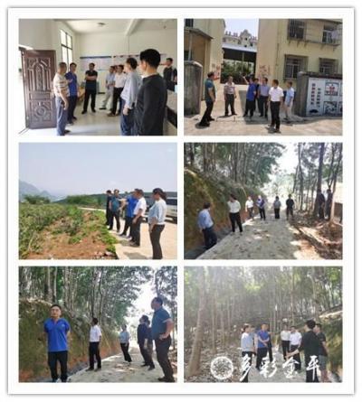 省农垦局调研组到金平农场进行企业化改革专题调研