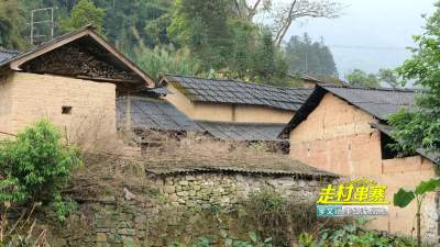 【民族团结进步】走村串寨之阿得博乡田心村传统村落