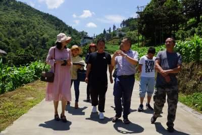 州委政研室副主任王兴贵一行到马鞍底乡开展茶产业调研