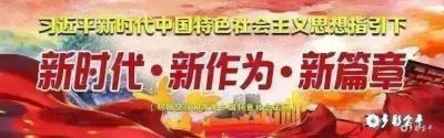 金平县农场两则项目招标通告