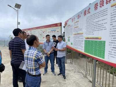 沙依坡乡晒场坡村——支部引领 党员带头 群众参与 共建美丽乡村
