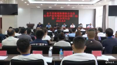 齐力谋划  团结协作  做大做强长寿产业——金平县长寿产业发展研究协会第一届第一次会员大会成功召开