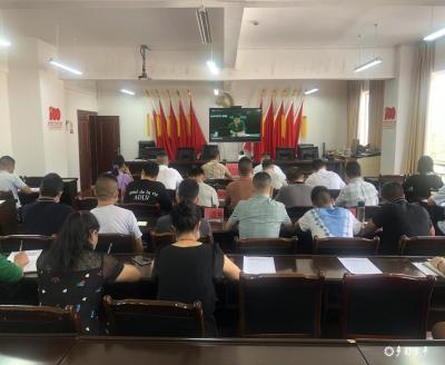 """金平县组织参加全省推进农村""""厕所革命"""" 视频会议"""