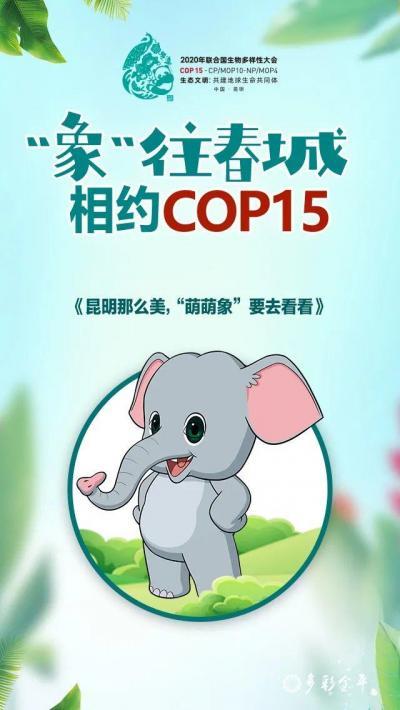 """【""""象""""往春城相约COP15】相约COP15 共赴""""春城之邀"""""""