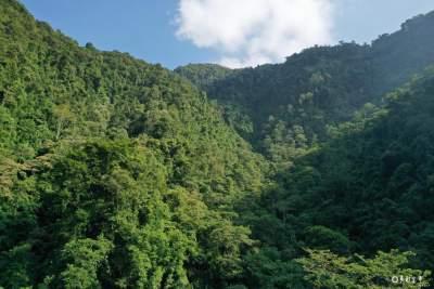 "COP15丨金平:""天然动植物基因库""——神奇干河河谷"