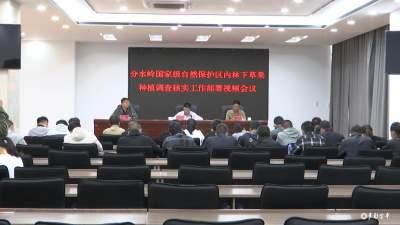 金平县召开云南金平分水岭国家级自然保护区内林下草果种植调查核实工作部署视频会议
