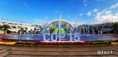 COP15   10月18日至11月7日,COP15会场将向公众免费开放!