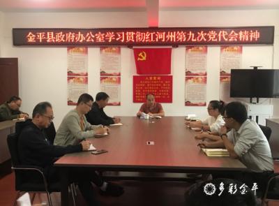 金平县政府办公室学习贯彻红河州第九次党代会精神