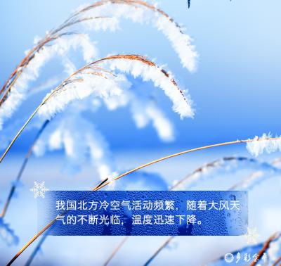今日霜降!秋即逝,冬将至